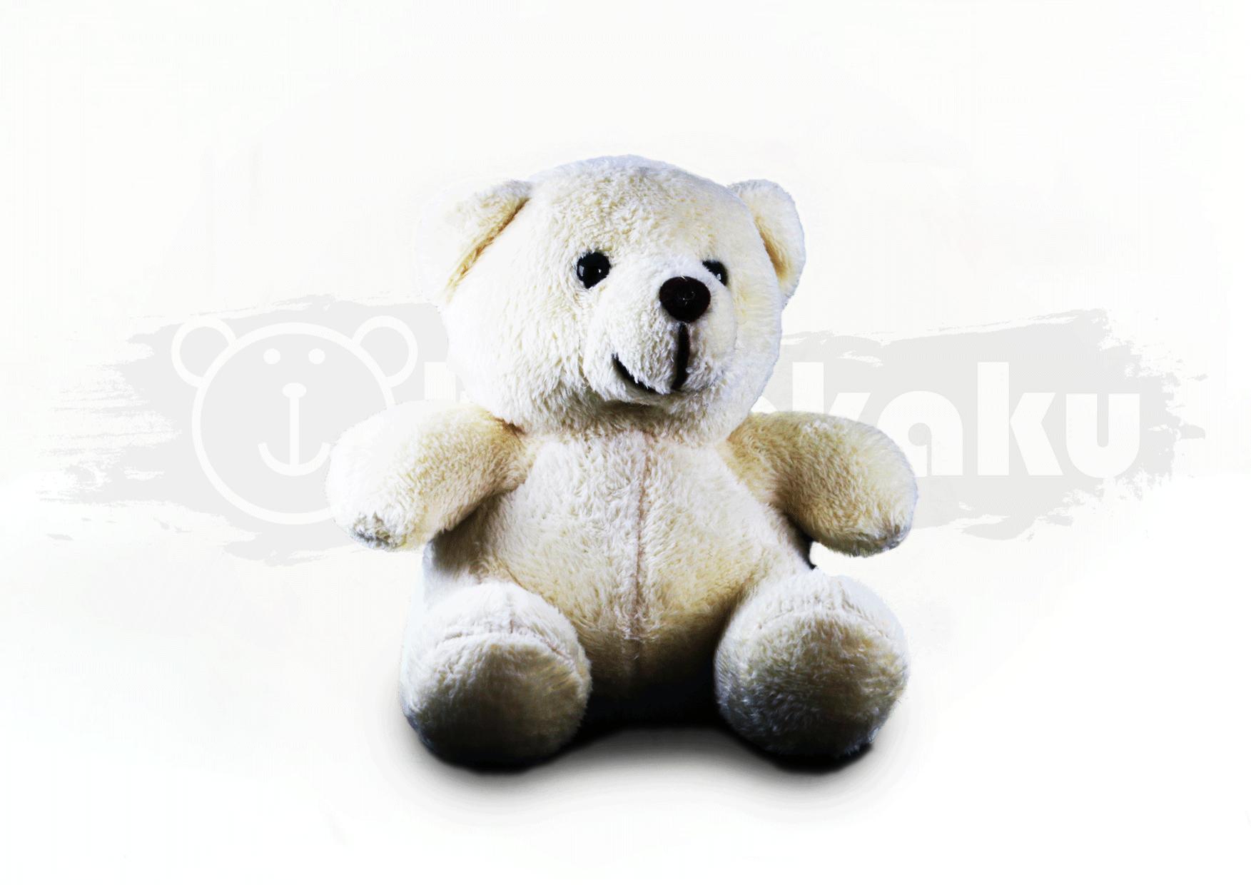 Jeslyn Bear Image