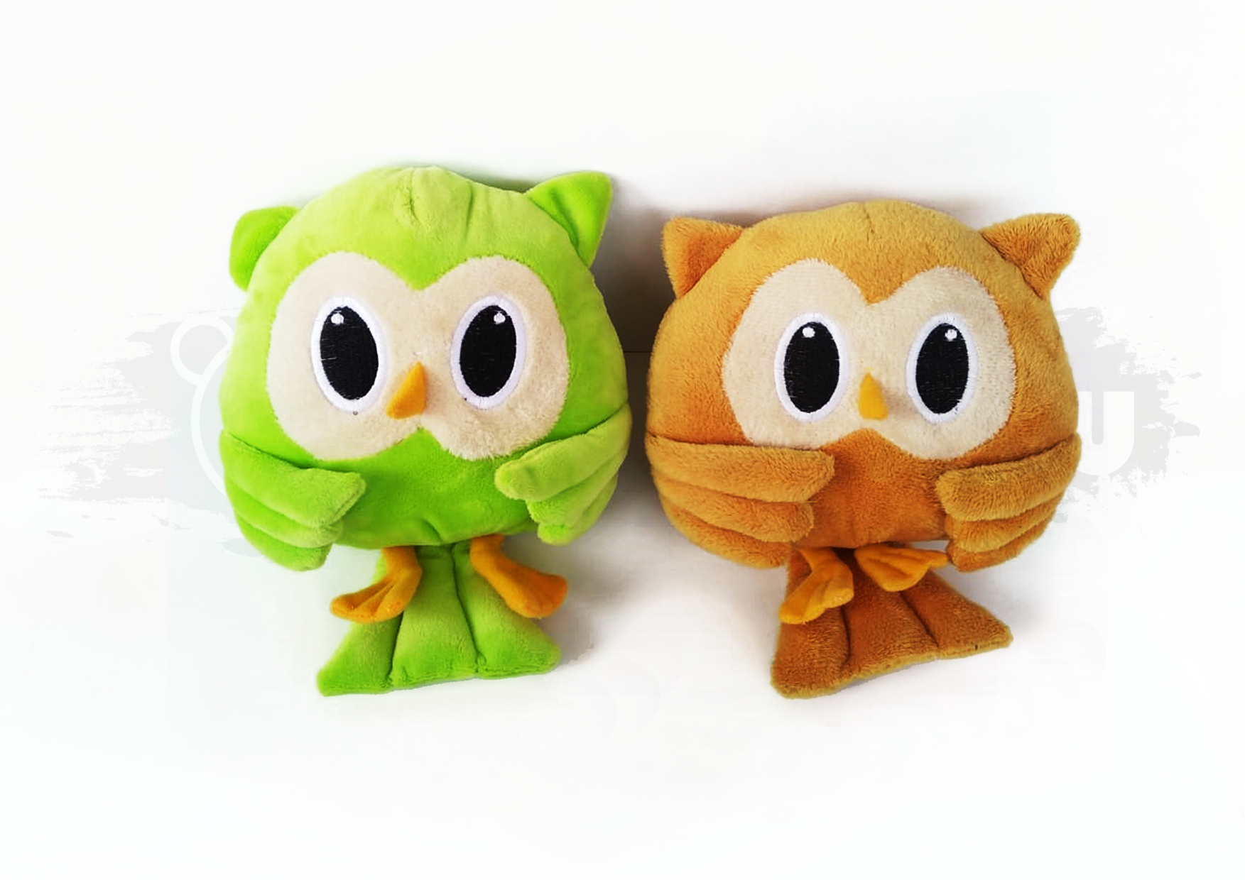 Owl 02 Image
