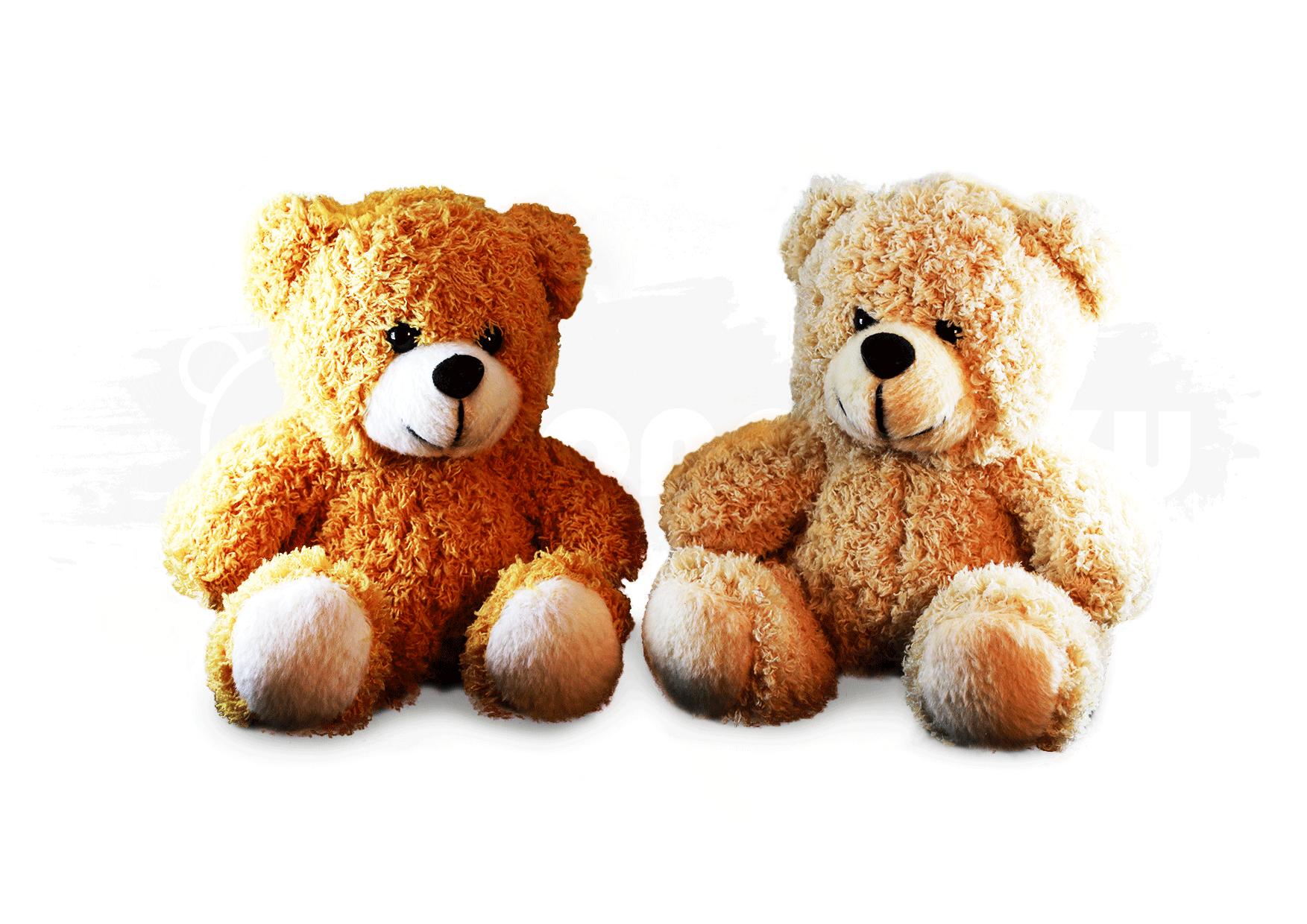 Boneka Souvenir - Classic Bear 01 Image