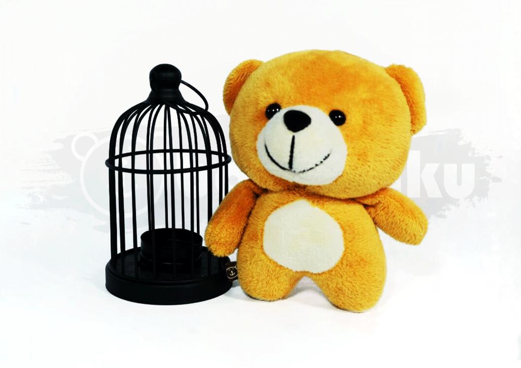 Archie Bear Image