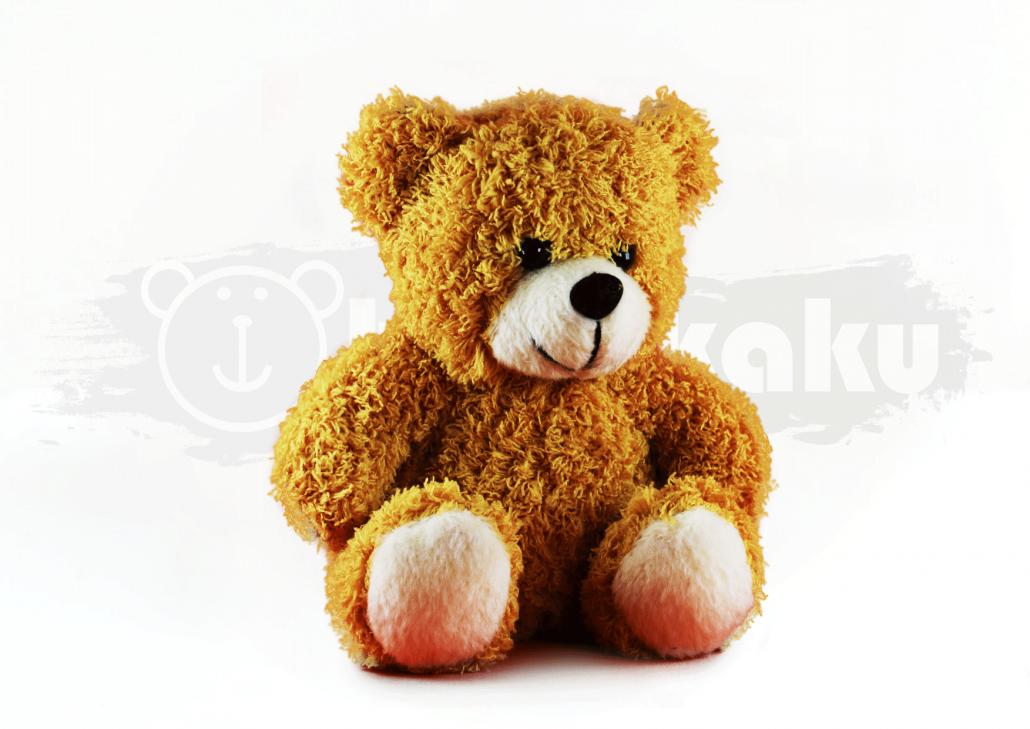 Boneka Souvenir - Classic Bear Image