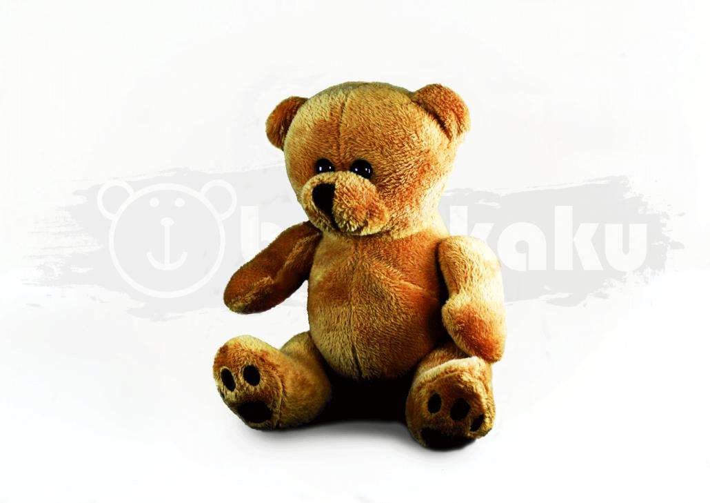 Mayna Bear Image