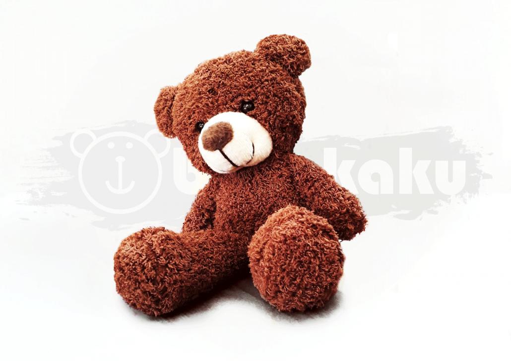 Salman Bear Image