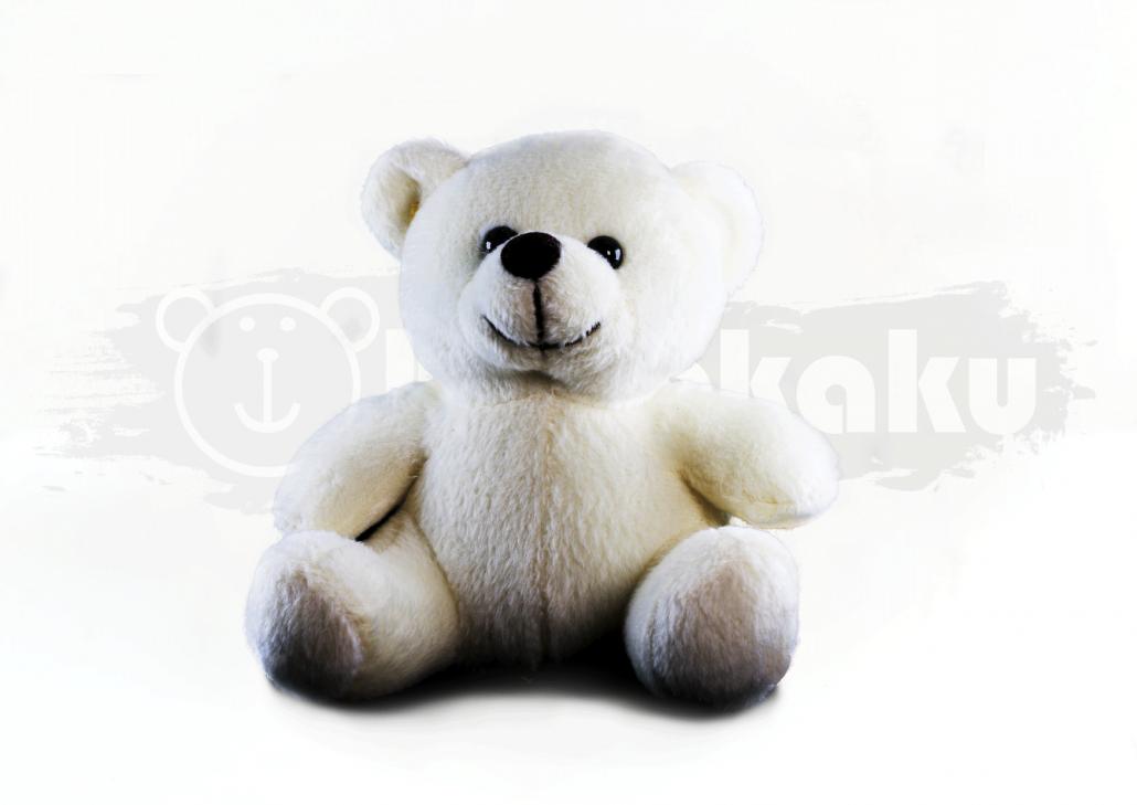 Vico Bear Image