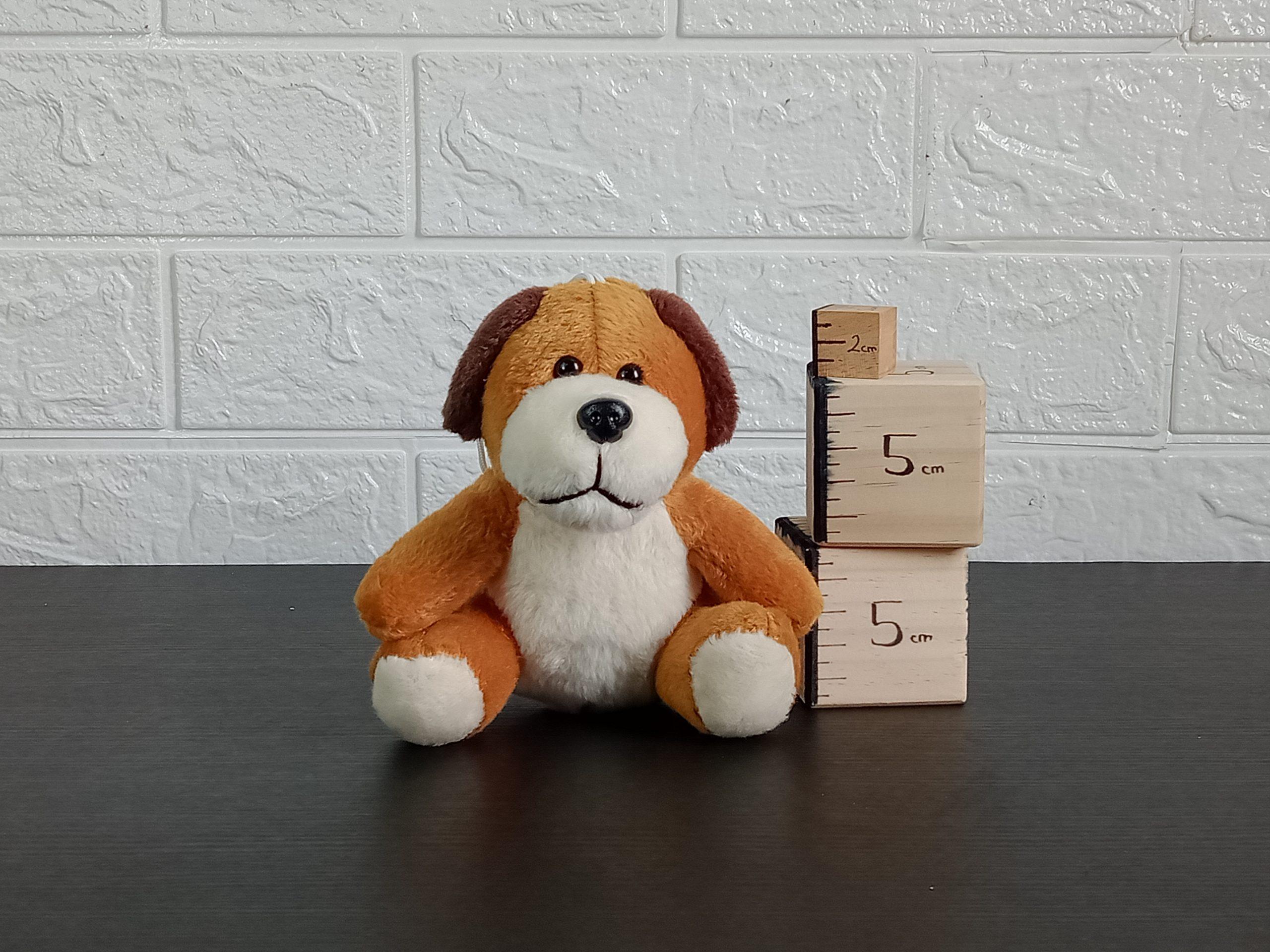 Animal Doggy Image