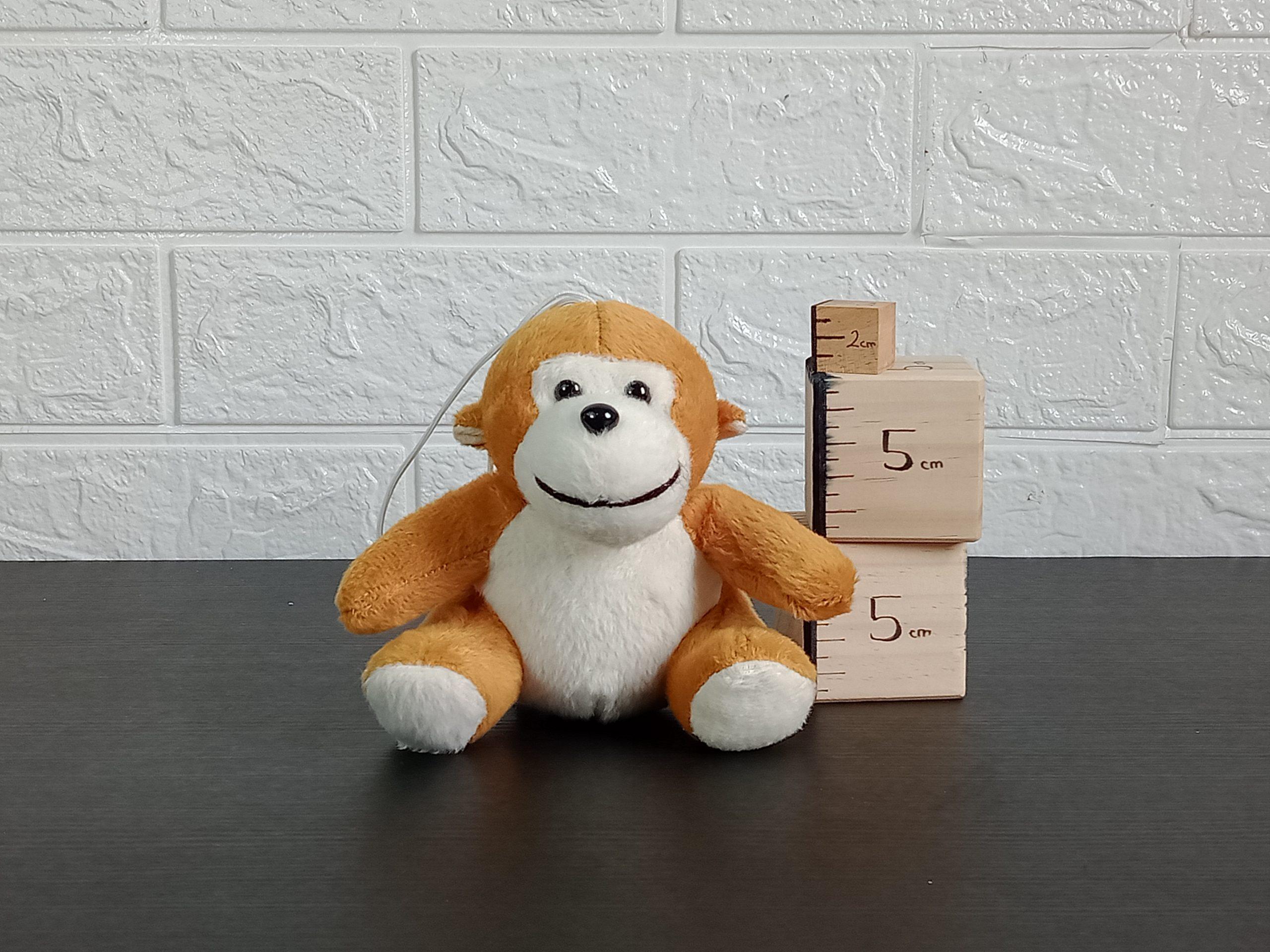 Animal Monkey Image