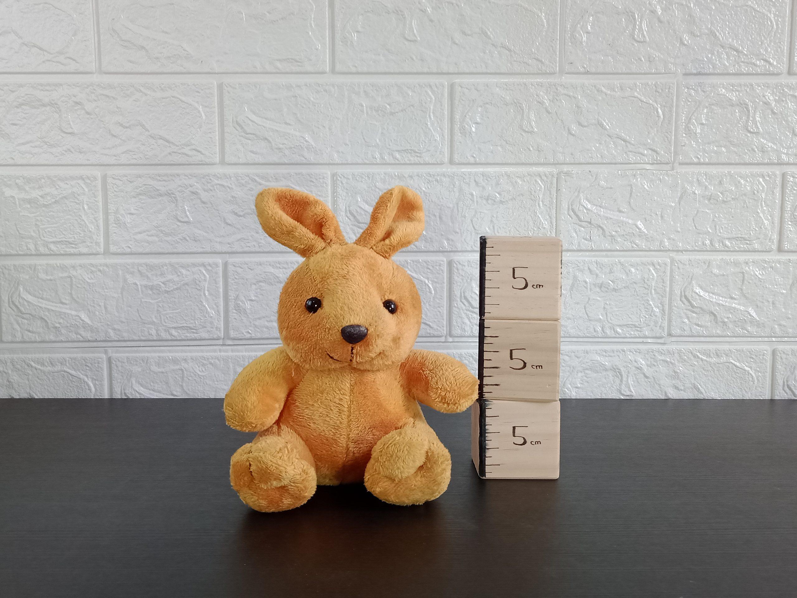 Animal Rabbit Yelvo Image