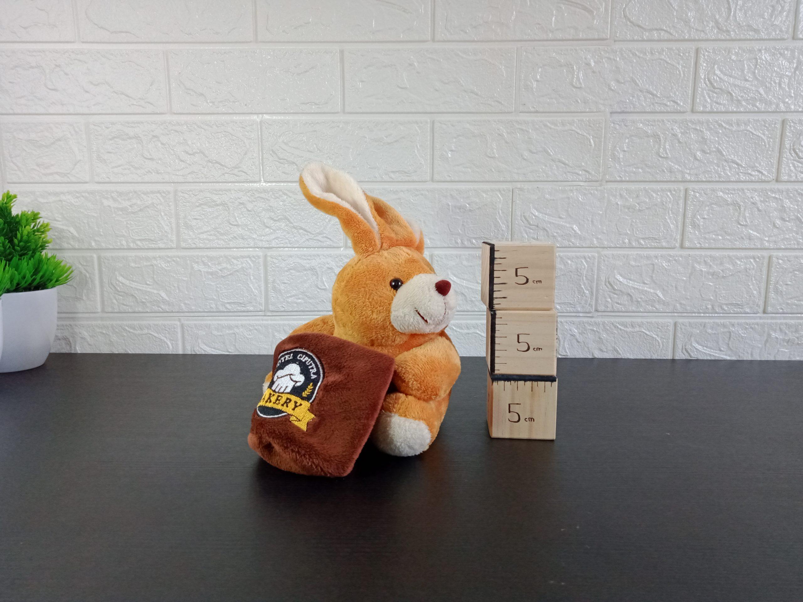 Animal Rabbit Pocket Image
