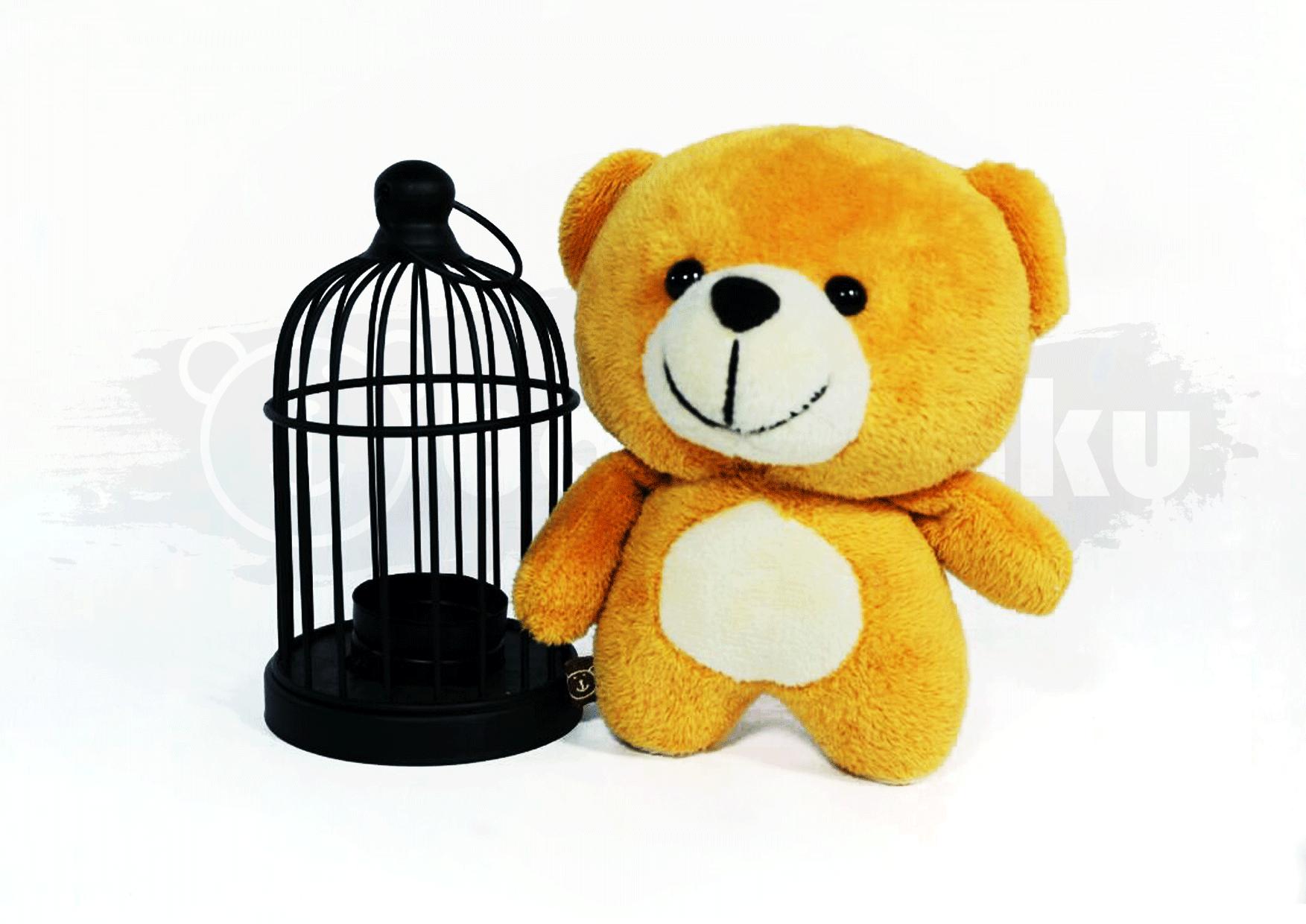 Archie Bear